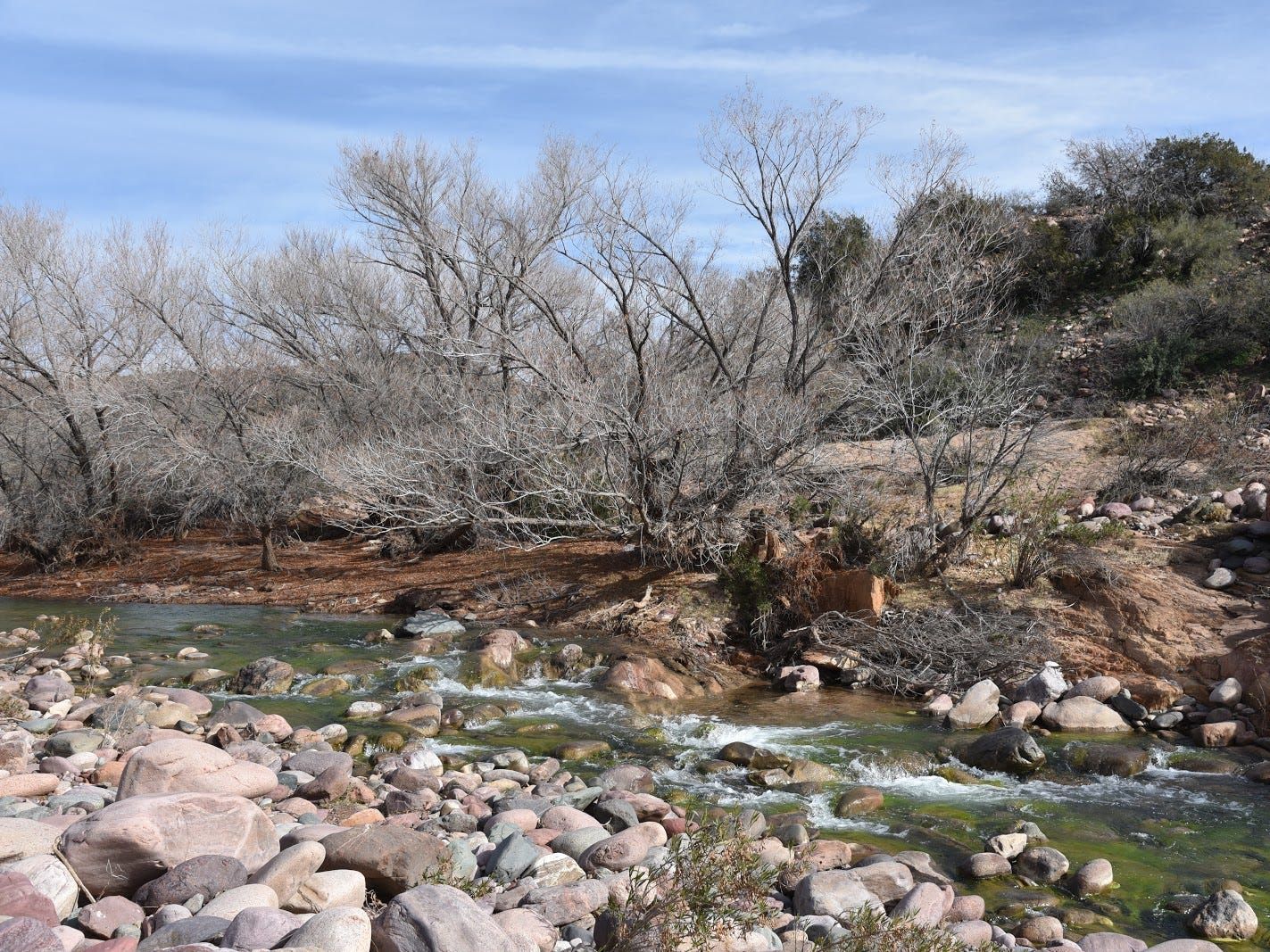 Rapids in Tonto Creek.
