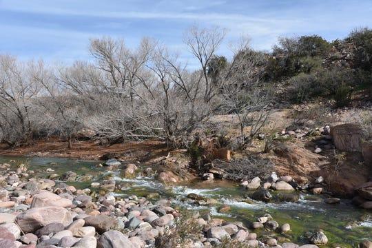 Rapids in Tonto Creek.