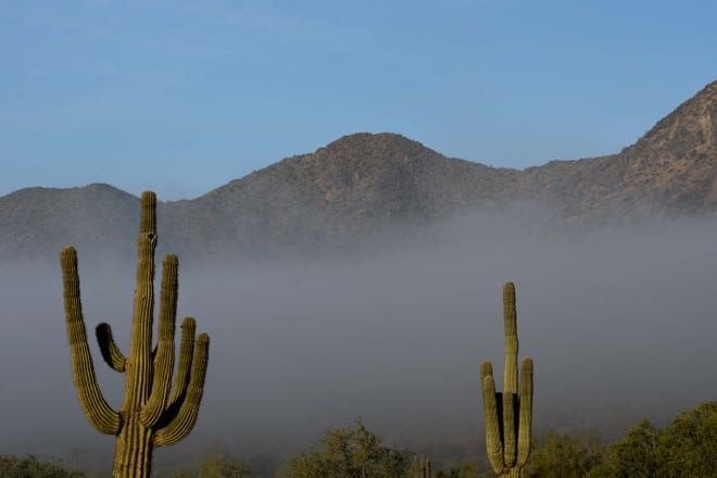 Early morning fog is seen all over the Valley in Phoenix area, Jan. 16, 2019.