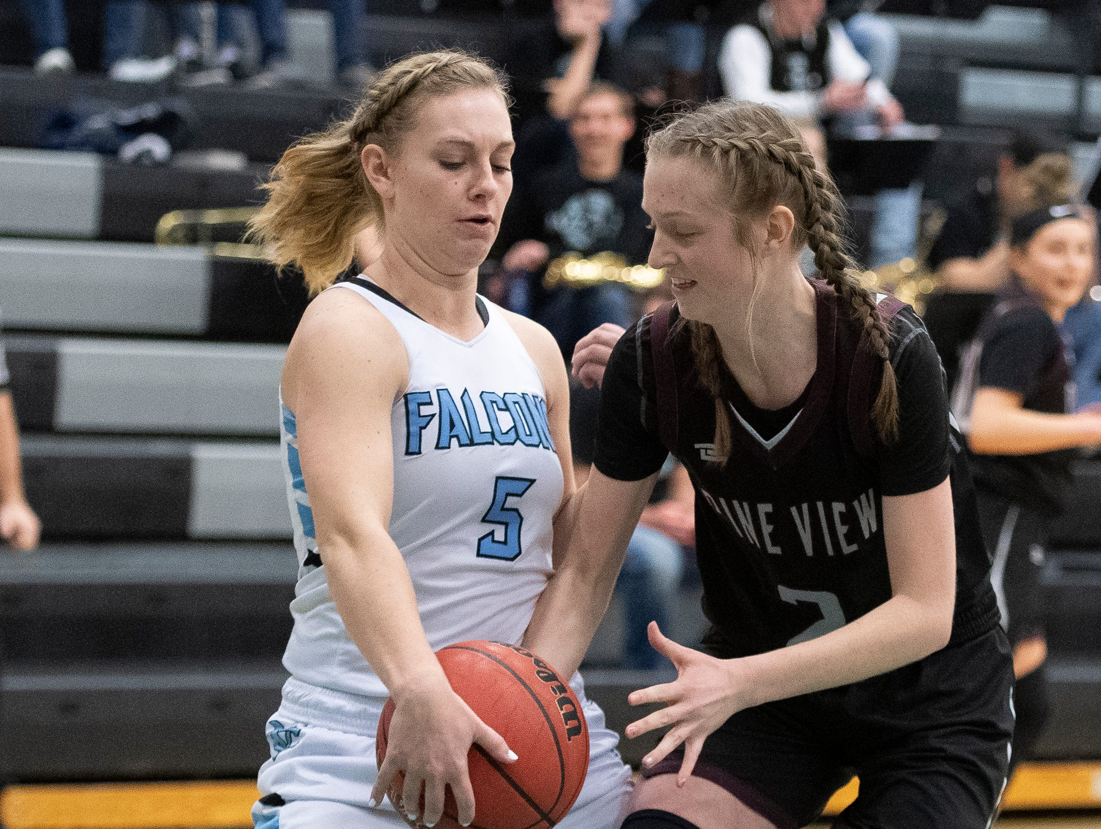 The Canyon View girls basketball team plays against Pine View at CVHS Tuesday, January 15, 2019. The CVHS Falcons won, 48-46.