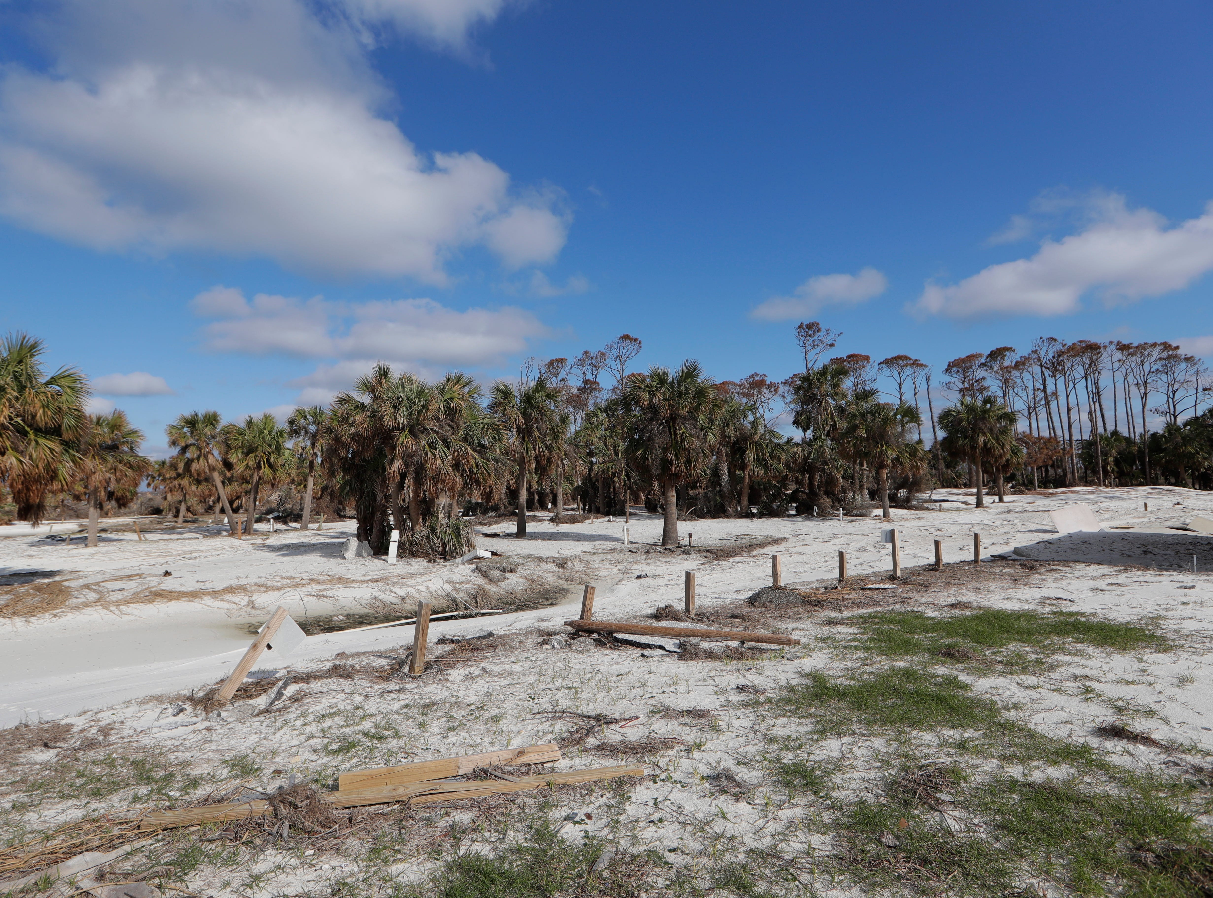 Campsites for St. Joseph Peninsula State Park visitors, Monday, Jan. 14, 2019. Hurricane Michael hit the panhandle three months prior and left a mess of destruction behind.