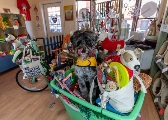 The Pause Pet Boutique in Red Hook.