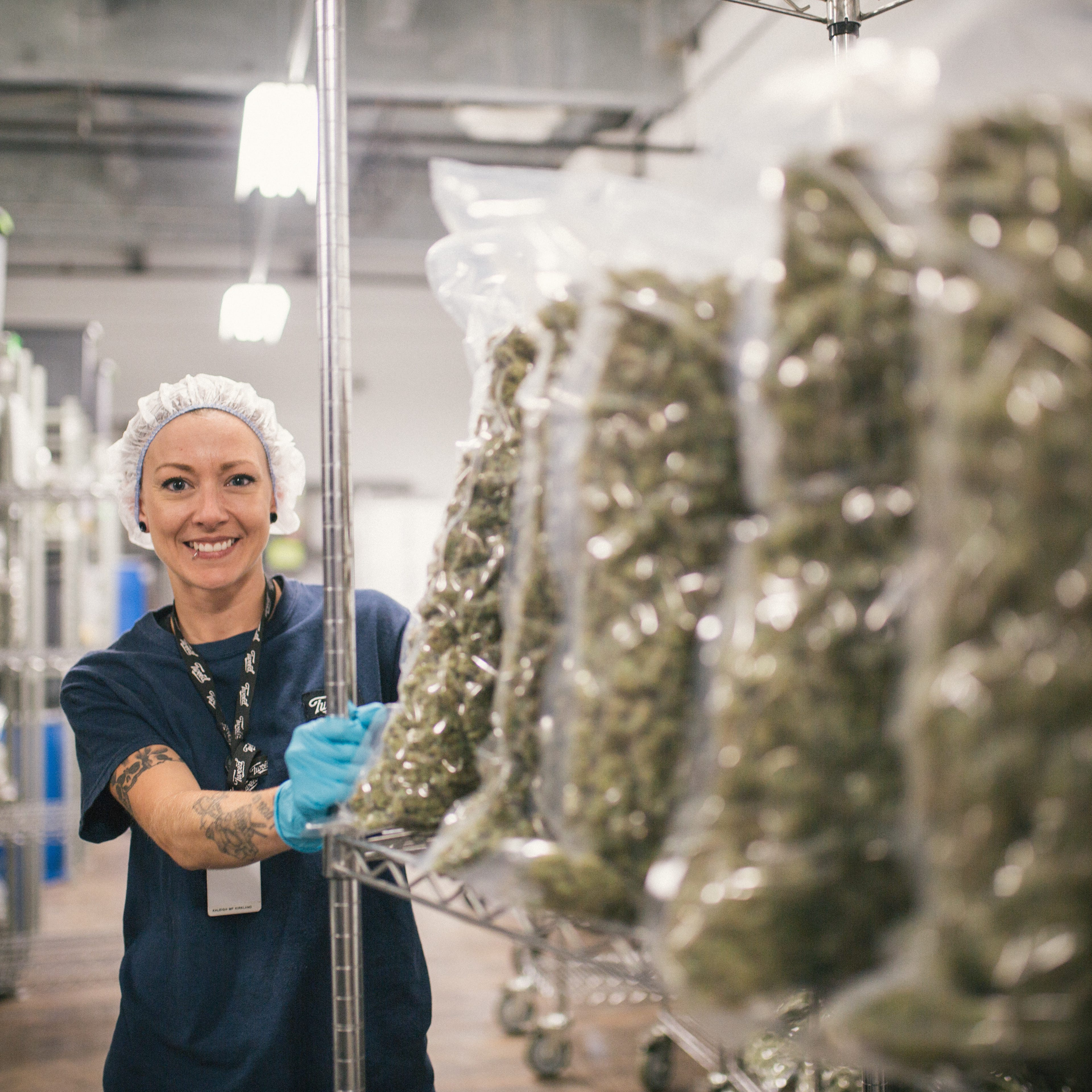 Cannabis, hemp economy blossoming in the Southern Tier