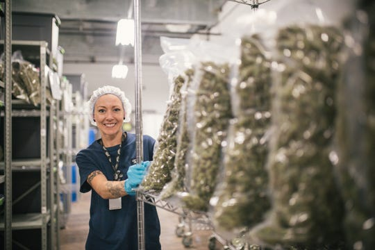 Varieties of hemp are wheeled through the Smiths Falls, Ontario plant of Canopy Growth.