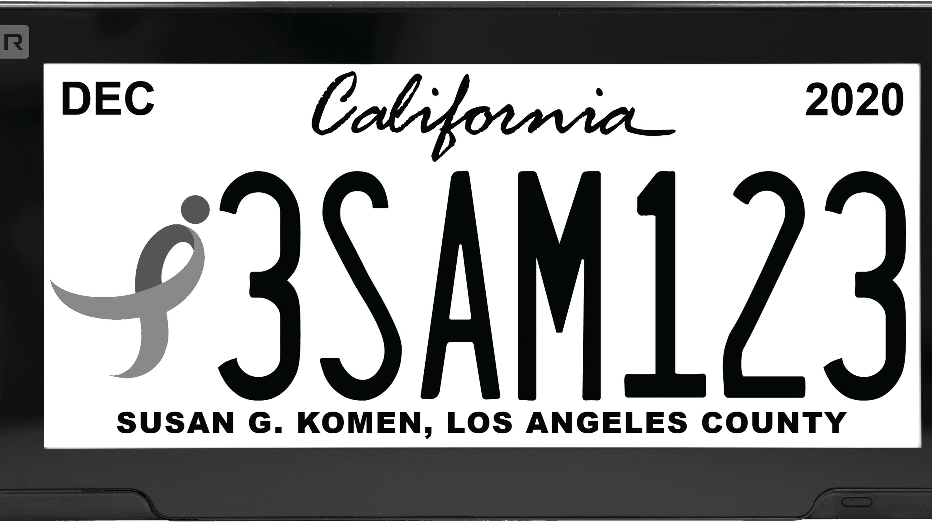 Digital license plates OK'd in Michigan: What are they?