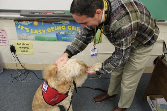 Fremont Ross High School biology teacher Scott Havice pets Sloopy, the school's therapy dog, after feeding her Cheerios in his classroom.