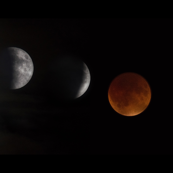 Lunar eclipse: You'll want to bundle up in Greenville to watch 'super blood wolf moon'