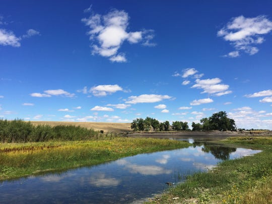 Montana Fish, Wildlife and Parks is seeking public comment on purchasing a perpetual easement of state school trust land on the Missouri River that includes the Little Muddy Creek Fishing Access Site near Ulm.