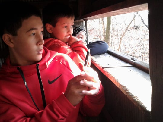 An unplugged, contemplative Kien Watanabe, 13, prepares to capture a cell-phone photo of songbirds recently from a blind at the Iowa Raptor Center, alongside his younger brothers Tommy and Niko.  All three are visitors to North Liberty from Japan.