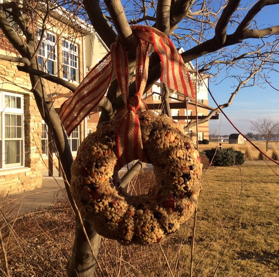 Seed ornaments look great and help out our avian friends