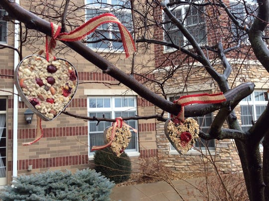 Cookie cutters help make fun shapes for hanging bird seed ornaments.