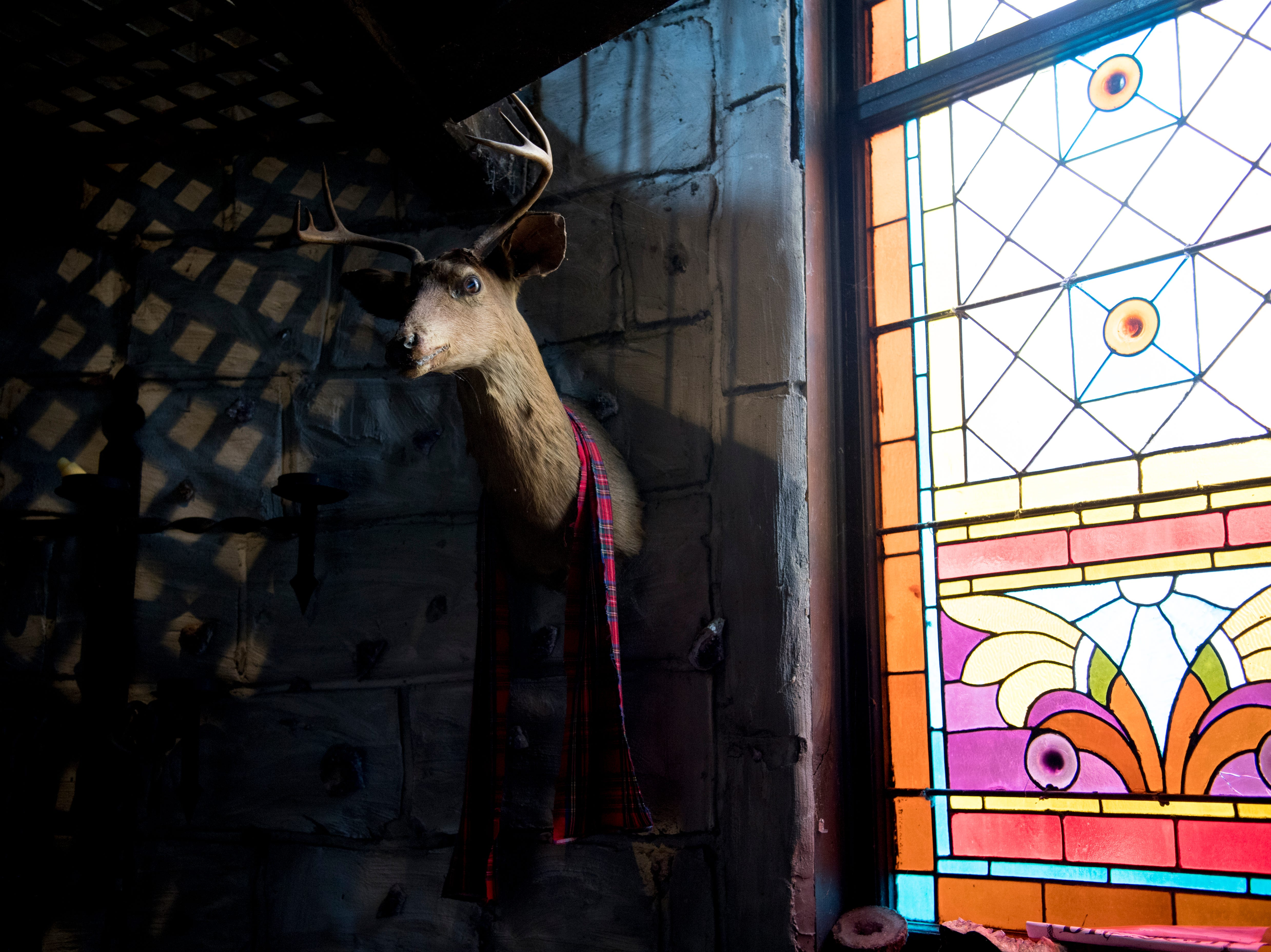 A deer bust hangs on the wall of the dungeon inside Williamswood Castle in South Knoxville, Tennessee on Thursday, January 17, 2019. The home, modeled after a medieval castle, was built by Julia Tucker in 1991 and took 6 years to complete. Many of the items in the home were sourced from around the Knoxville area.
