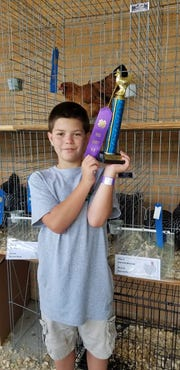 Ty Atchley with the first place in the record book ribbon he won for his champion Ameraucana at the Karns Community Fair Knox County 4-H Chick Chain Show and Sale, July 28, 2018.