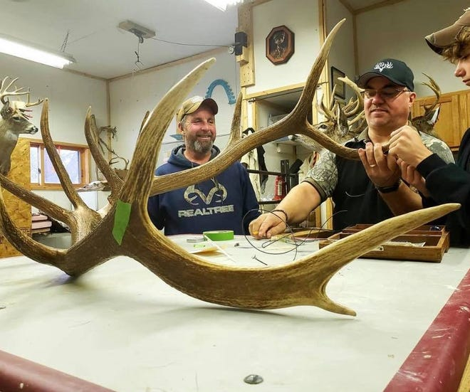 Dan Vandertie (left) of Brussels, Wisconsin, looks on as the antlers are measured of the elk he shot in November near Clam Lake, Wisconsin. The elk scored 270 3/8 inches (net) and is the state record according to records kept by the Wisconsin Buck and Bear Club.