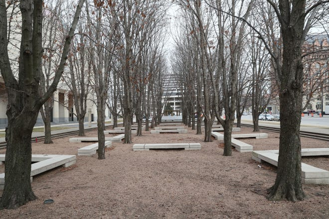 A grove of horse chestnut trees is shown Jan. 16, 2019,  at the Marcus Center for the Performing Arts.