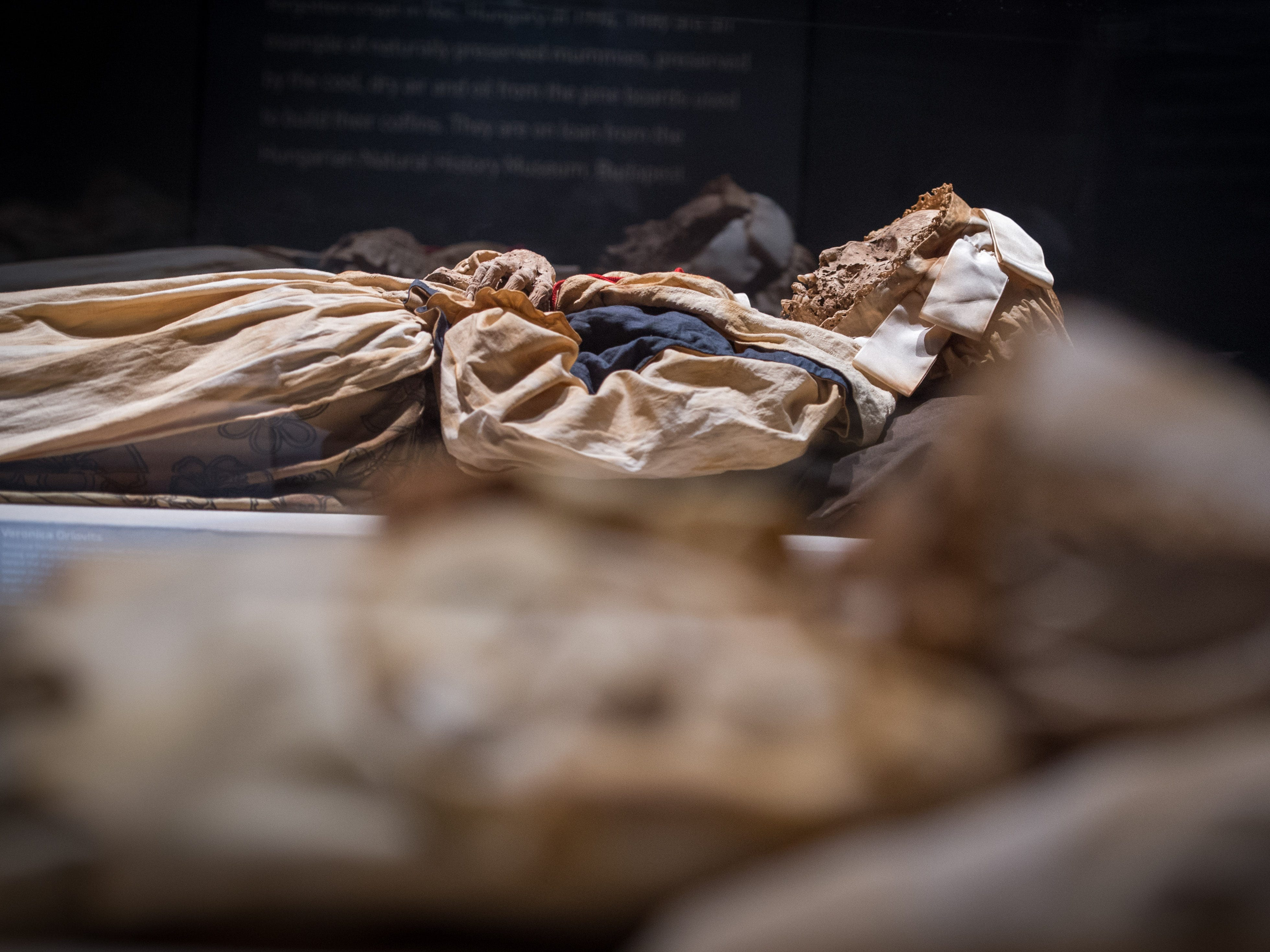 Veronica Olovits is a member of the Orlovits family display which is part of the Mummies of the World: The Exhibition at the Arizona Science Center.