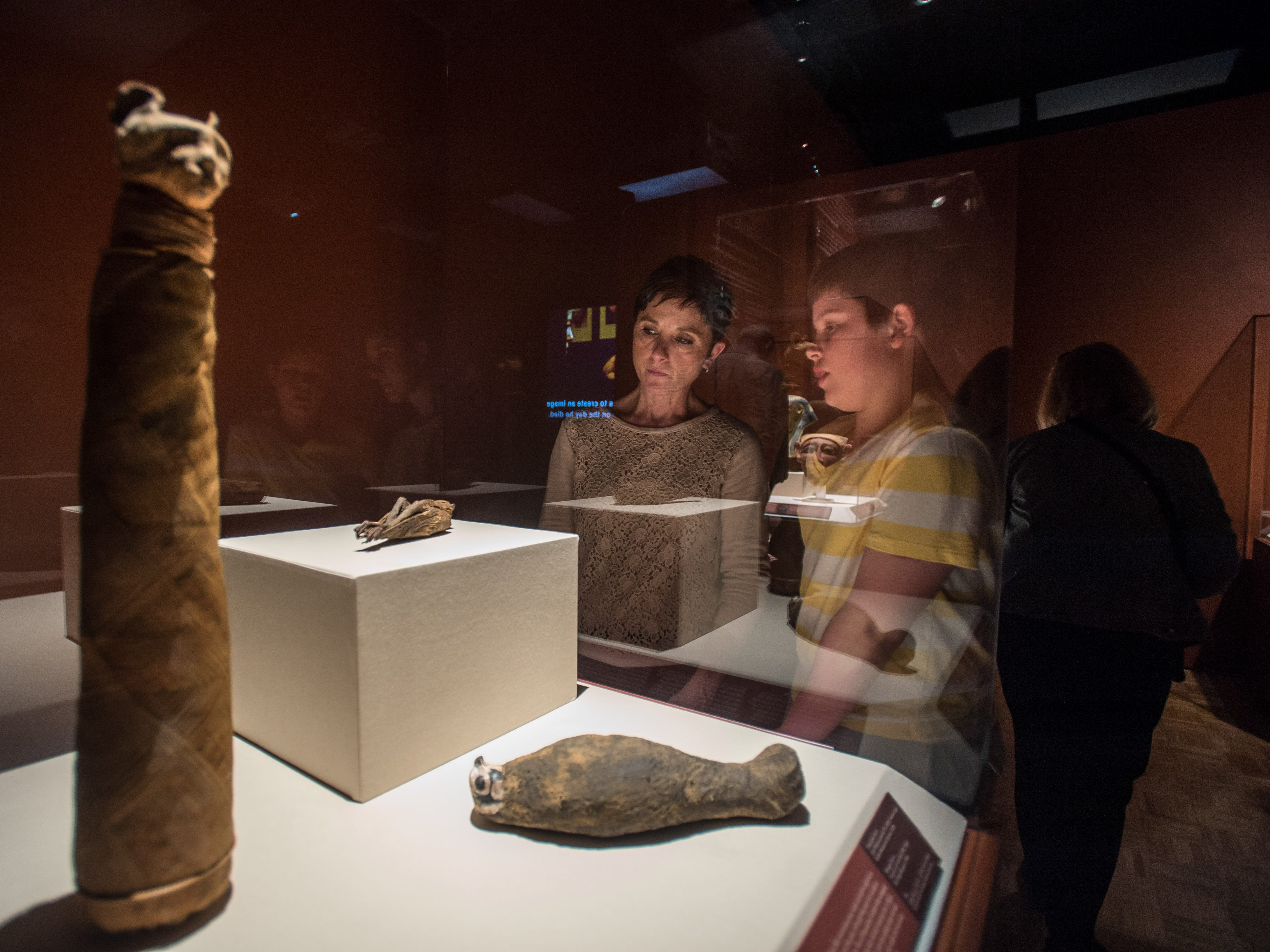 Onlookers examine animal mummies as they make their way through the Mummies of the World: The Exhibition at the Arizona Science Center.