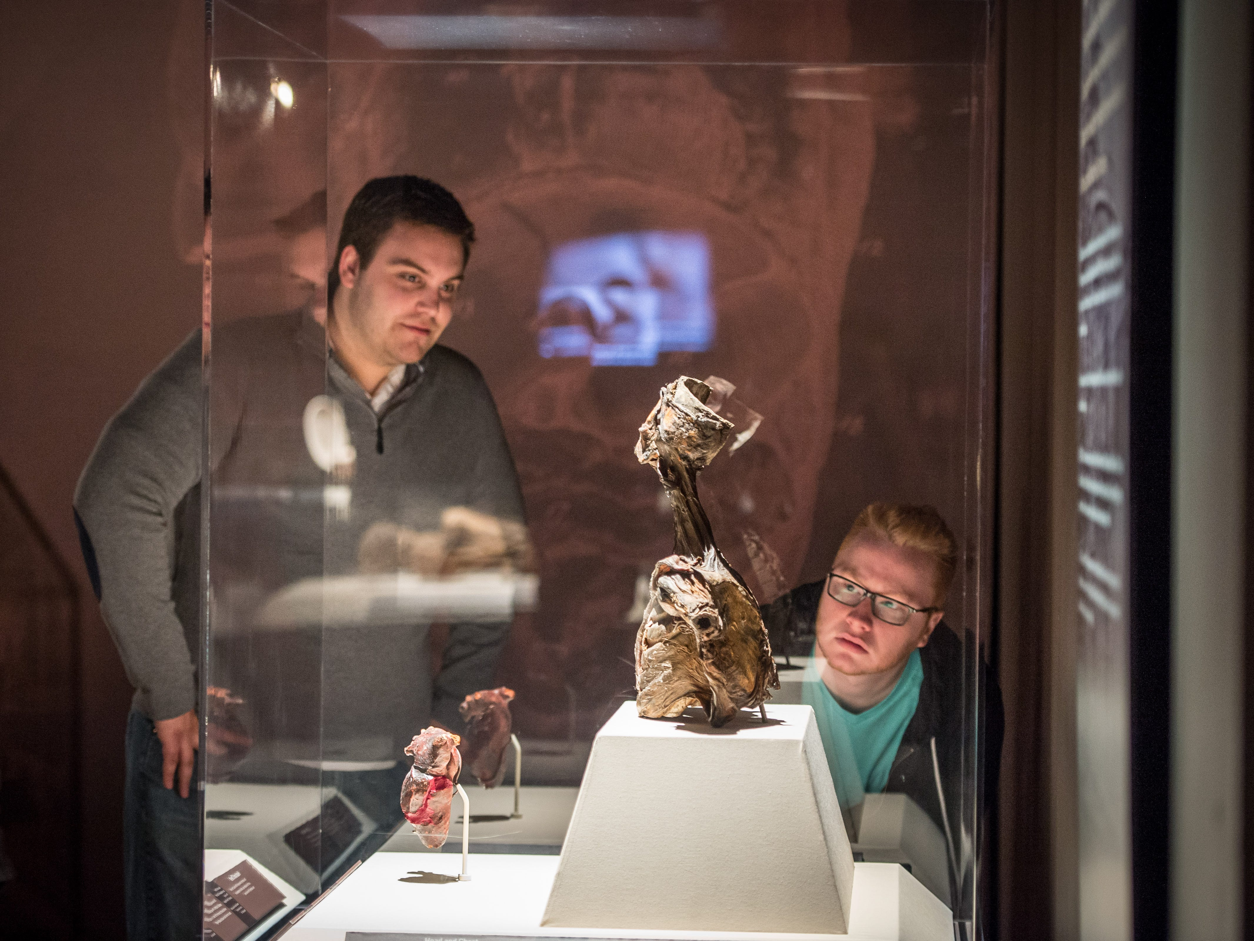 Onlookers admire the Burns Collection as they make their way through the Mummies of the World: The Exhibition display at the Arizona Science Center.