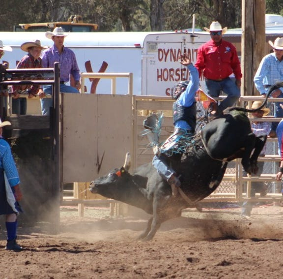 Brad Moreno following dreams on the Navajo Nation as champion bull rider, wrestler
