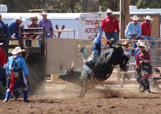 Brad Moreno is a bull rider, wrestler and cross country runner.