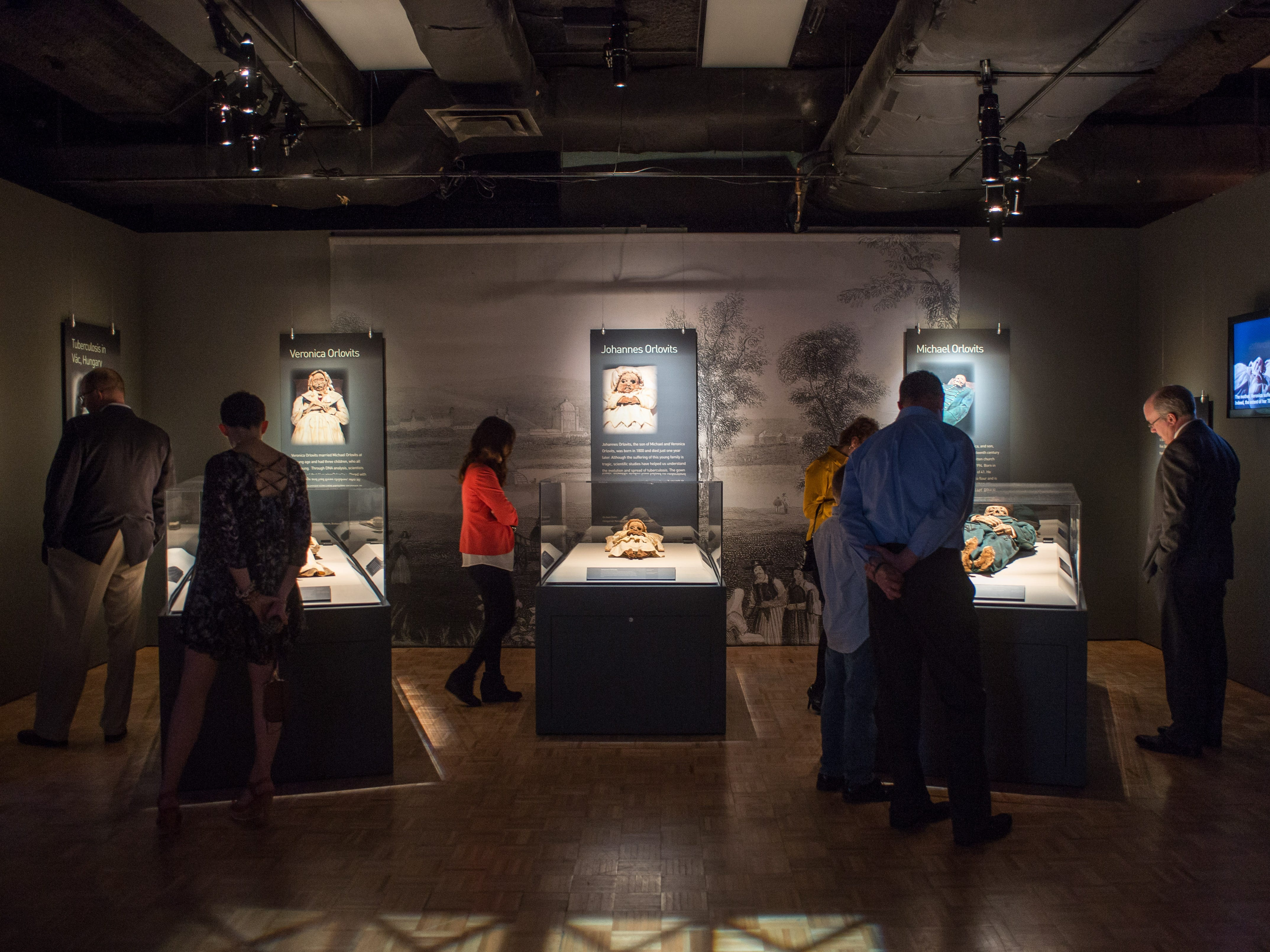 Visit the Orlovits family display during The Mummies of the World: The Exhibition at the Arizona Science Center.