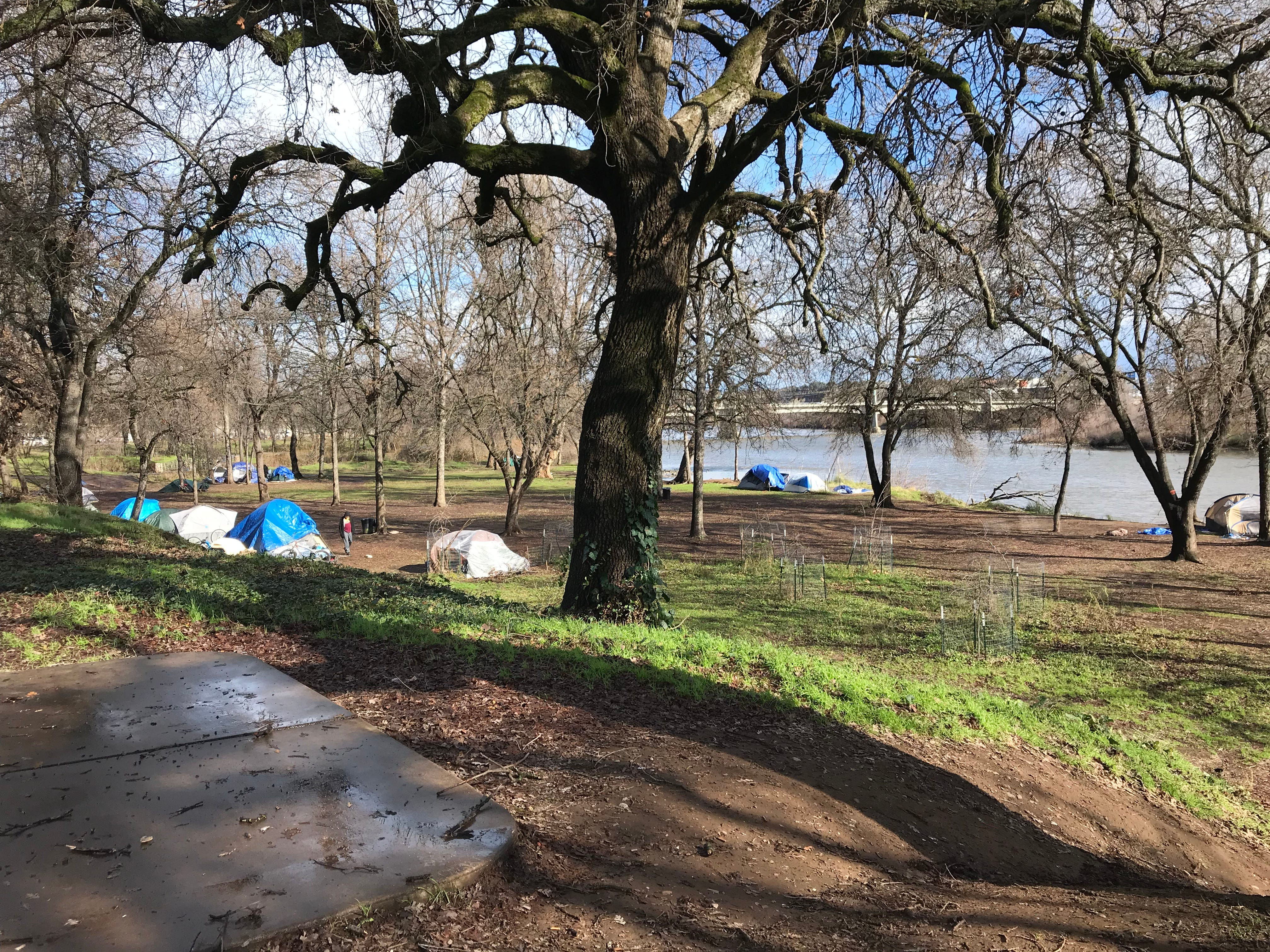 People are living in tents along the Sacramento River near downtown Redding. January 17, 2019