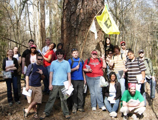 Taxonomy class members gather around the huge loblolly pine at Congaree National Park in South Carolina.
