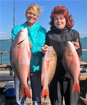 Mutton snapper were biting good aboard the Lady Chris party boat out of Taylor Creek Marina in Fort Pierce Monday.