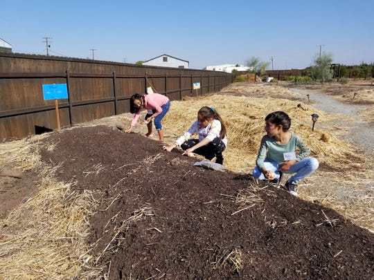 Students from Poplar Food Network plant seeds at FoodLink's community garden.