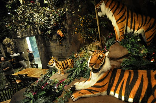 Rainforest Cafe, shown here in Opry Mills, would be welcome in the Fox Cities, according to some readers in the 2019 Reader Wish List poll.