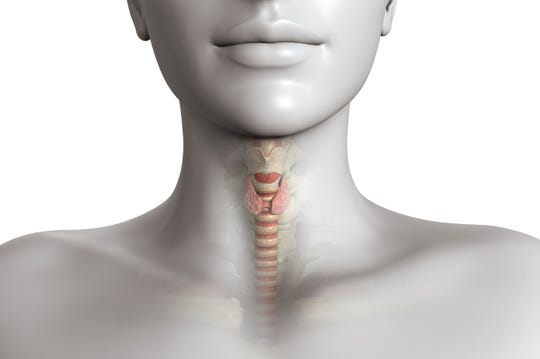 Up to 27 million Americans may be affected by a thyroid disorder, and more than half might be unaware of it.