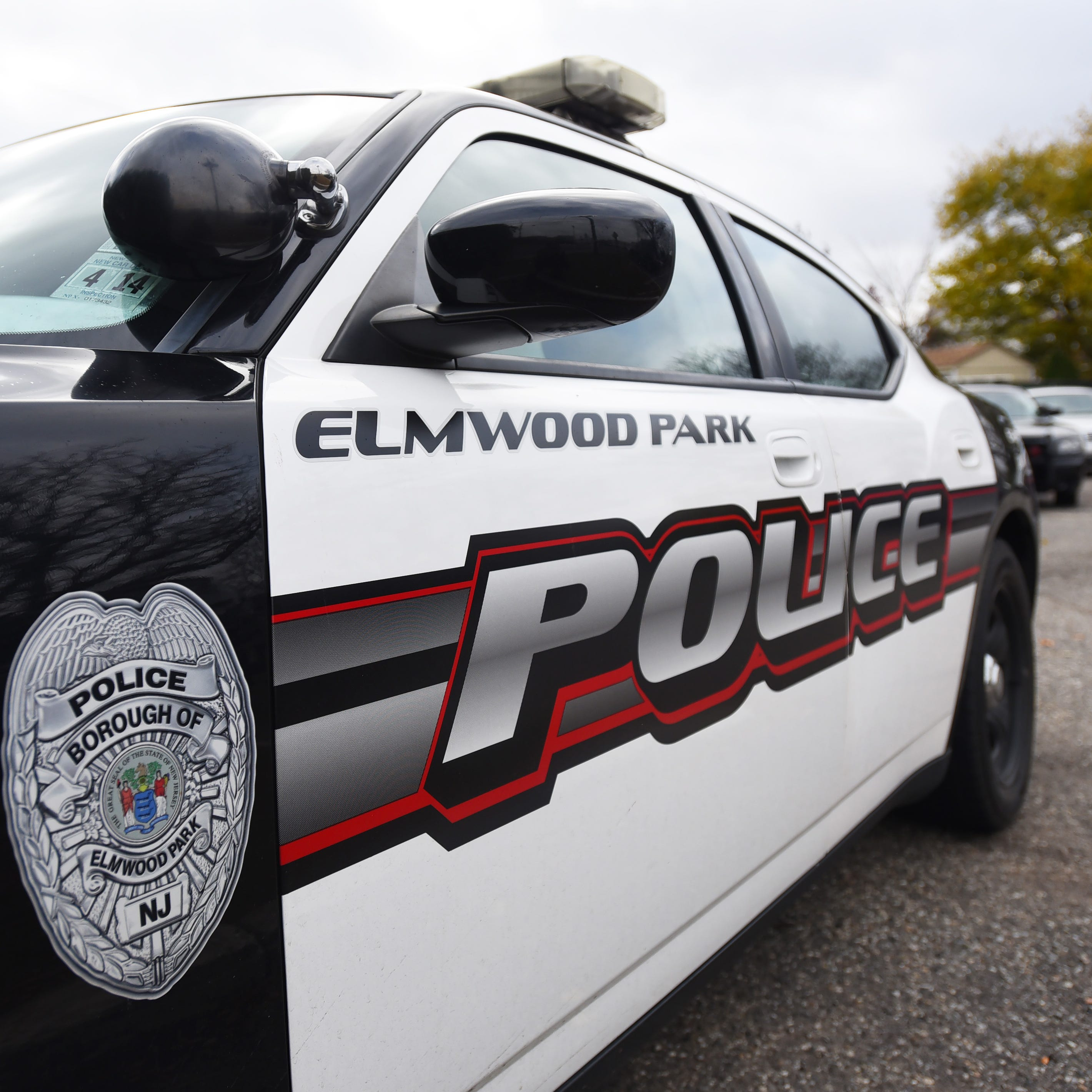 Elmwood Park considers police rank restructuring