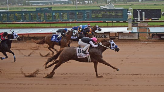 Champion Bodacious Eagle racied. at Ruidoso Downs.