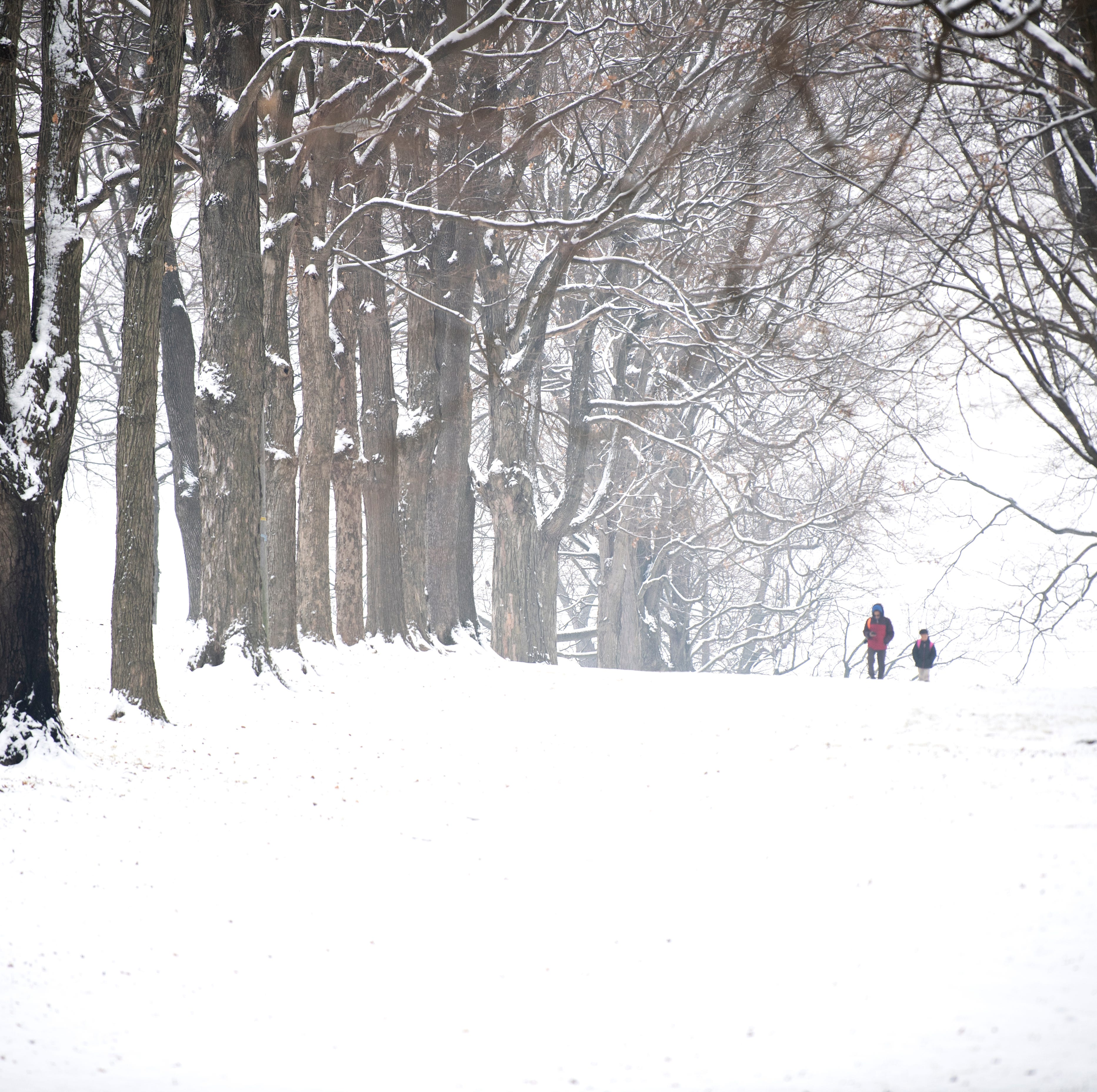 How much snow will central Pa. get? Here's what meteorologists are estimating