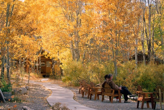 Aspens, their leaves trembling in the breeze, populate the Sorensen's Resort property.