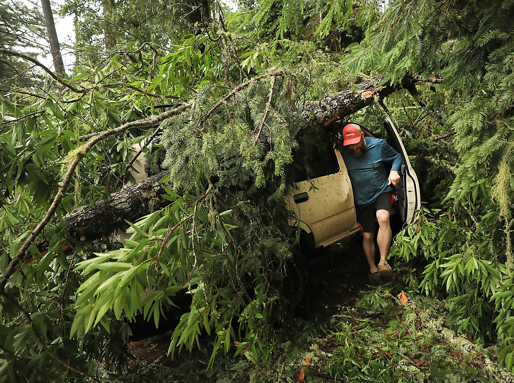 In this Wednesday, Jan. 16, 2019 photo, Shane Francis of Guerneville, Calif., steps out of his SUV after making sure it started up after a large tree fell on it during a wind storm that tore through Sonoma County and northern California.