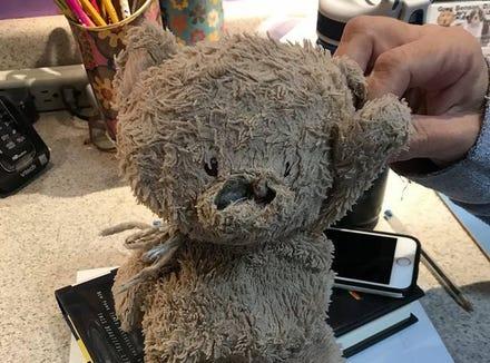 Mom-of-five Gina Horne Bernbaum came across this worn stuffed animal at an Arizona park.