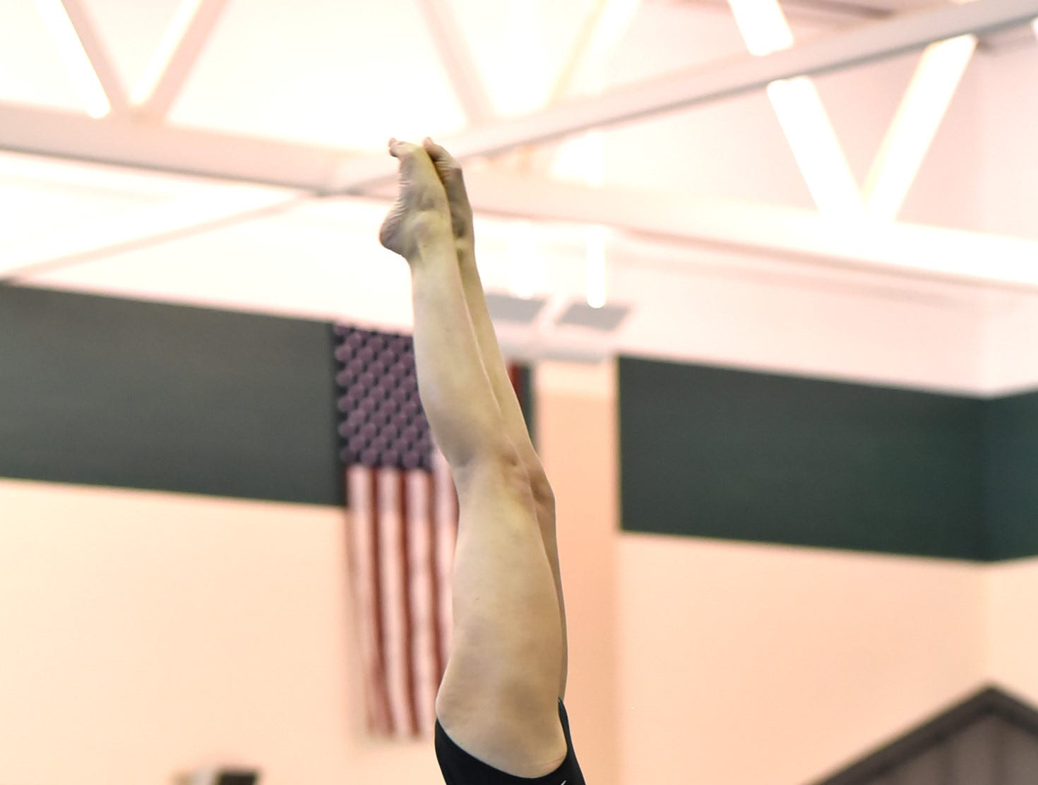 It's on to the water for Karina Ashton of Mason as she dives at the Southwest Ohio Swimming and Diving Classic, January 19, 2019.
