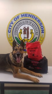 HPD K-9 Exo poses with a  medical kit.
