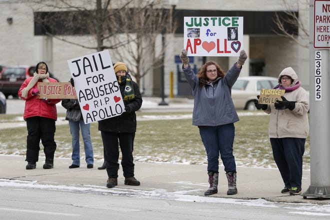 Activists hold signs calling for harsher punishment in animal abuse cases before a preliminary hearing for James A. Nettles outside of the Manitowoc County Courthouse Friday, January 18, 2019, in Manitowoc, Wis. Nettles is charged with felony mistreatment of animals resulting in an animal's death and misdemeanor mistreating animals, failure to provide shelter and failure to provide food and water.