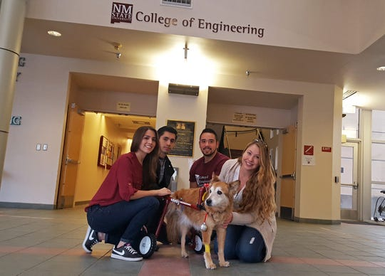 New Mexico State University College of Engineering students and Aggie Innovation Space mentors, from left, Natalia Perez, Abdiel Jimenez and Arturo Dominguez designed and developed a wheelchair for Kita and his owner Michelle Lebsock. Kita's right hind leg was amputated due to cancer in spring 2016.
