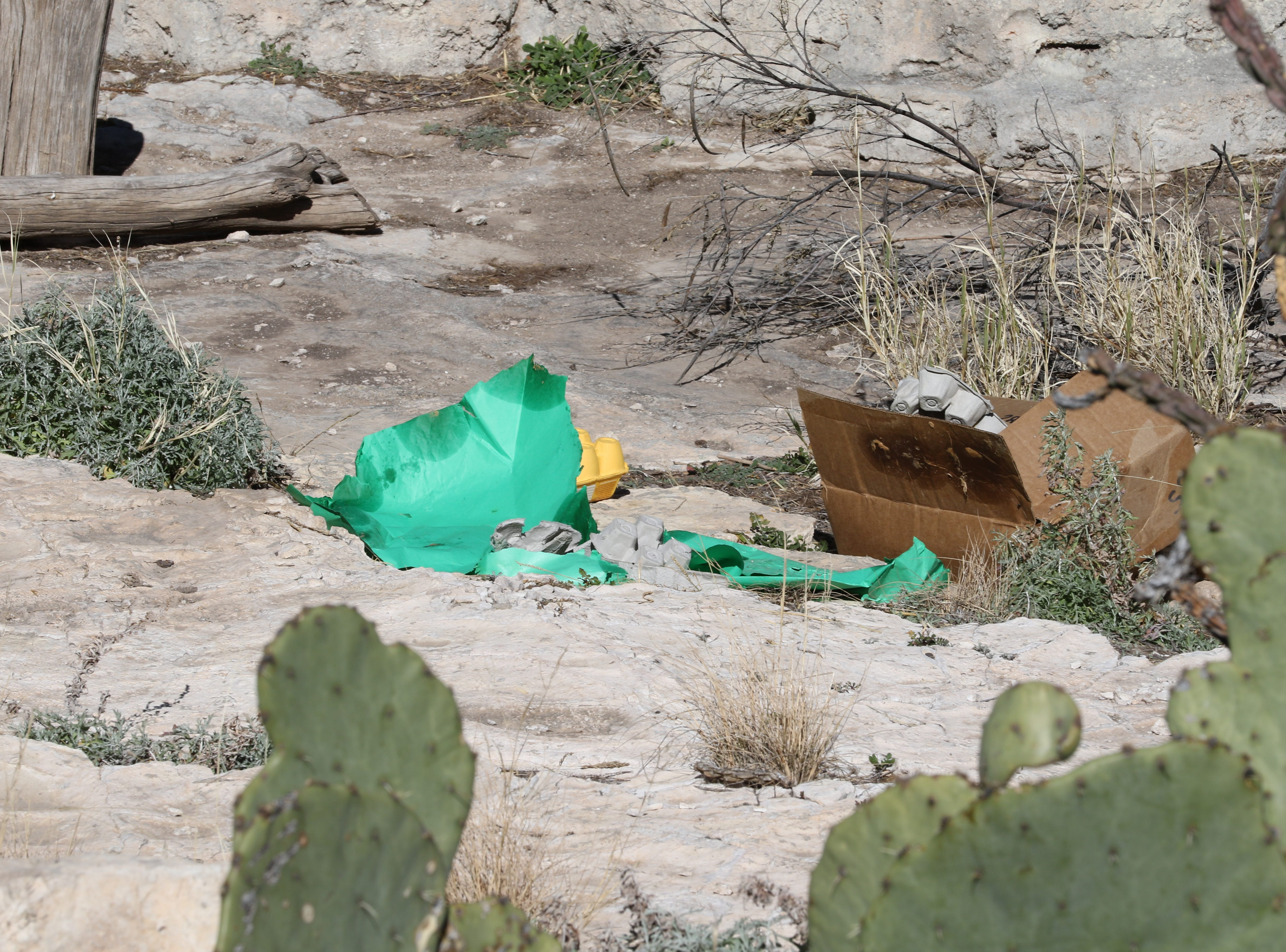 The remains from Maggie the bear's birthday meal, Jan. 19, 2018 at Living Desert Zoo and Gardens State Park.