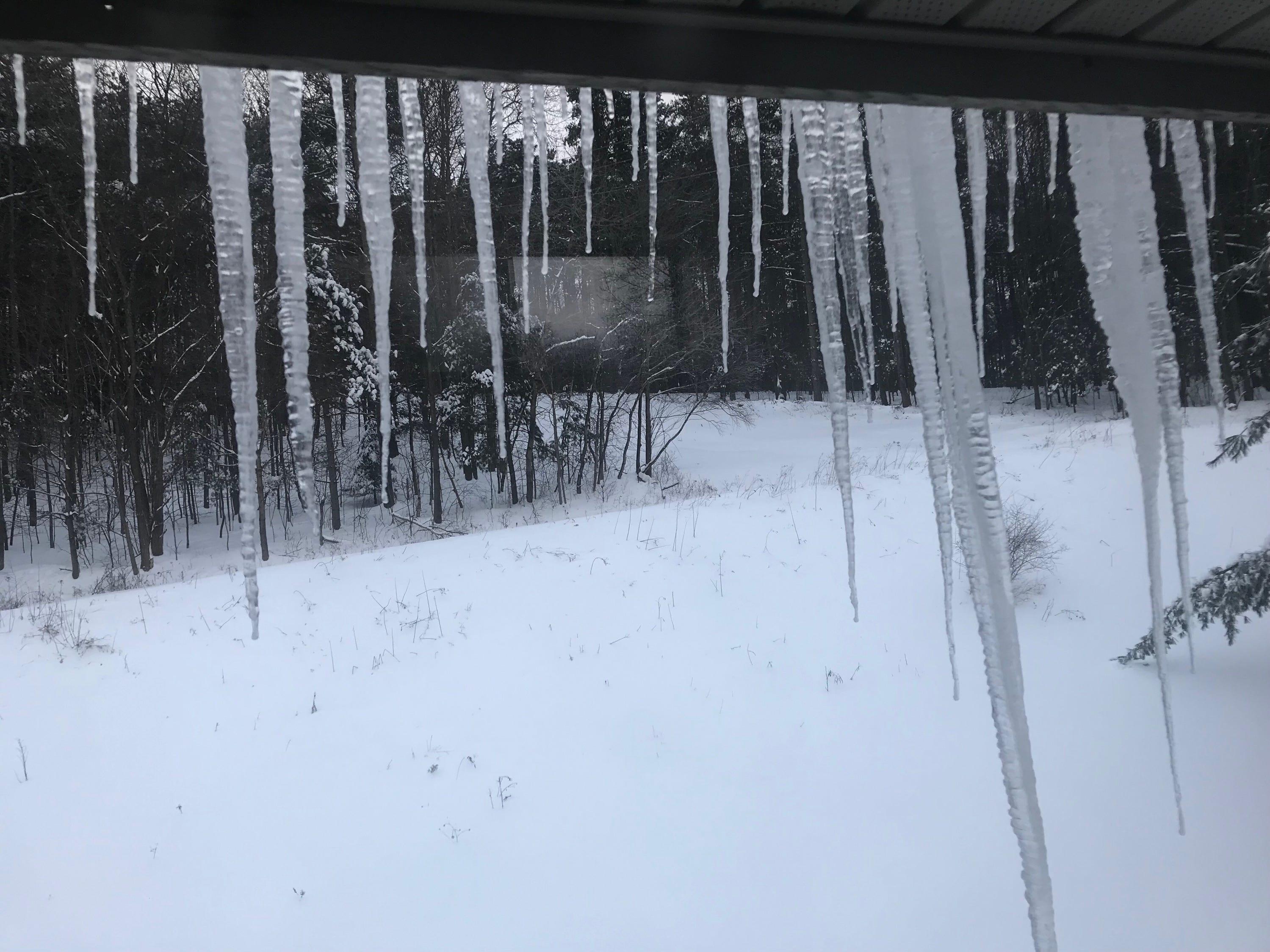 Snowy scene in Binghamton Sunday.