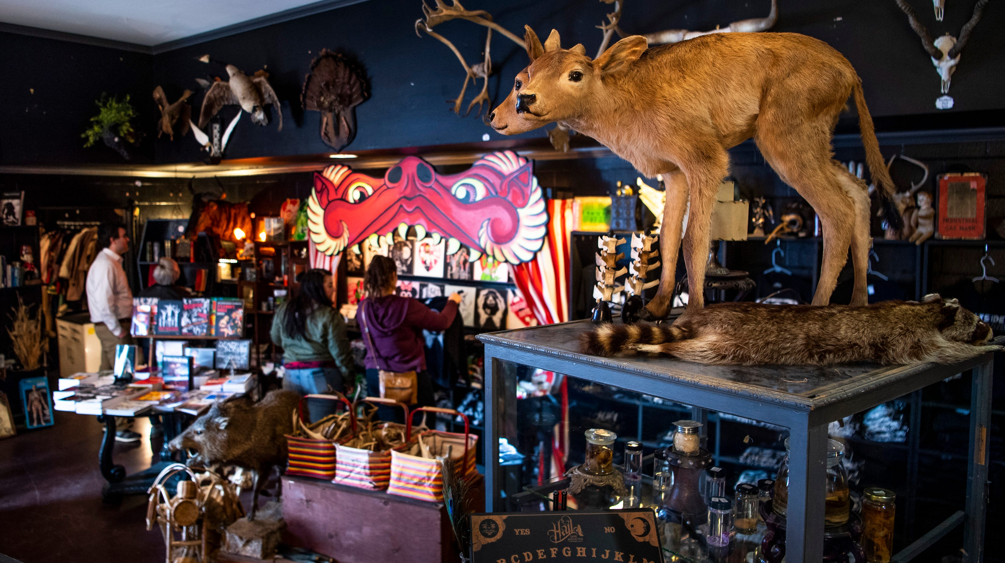The 11 weirdest things to do in Nashville