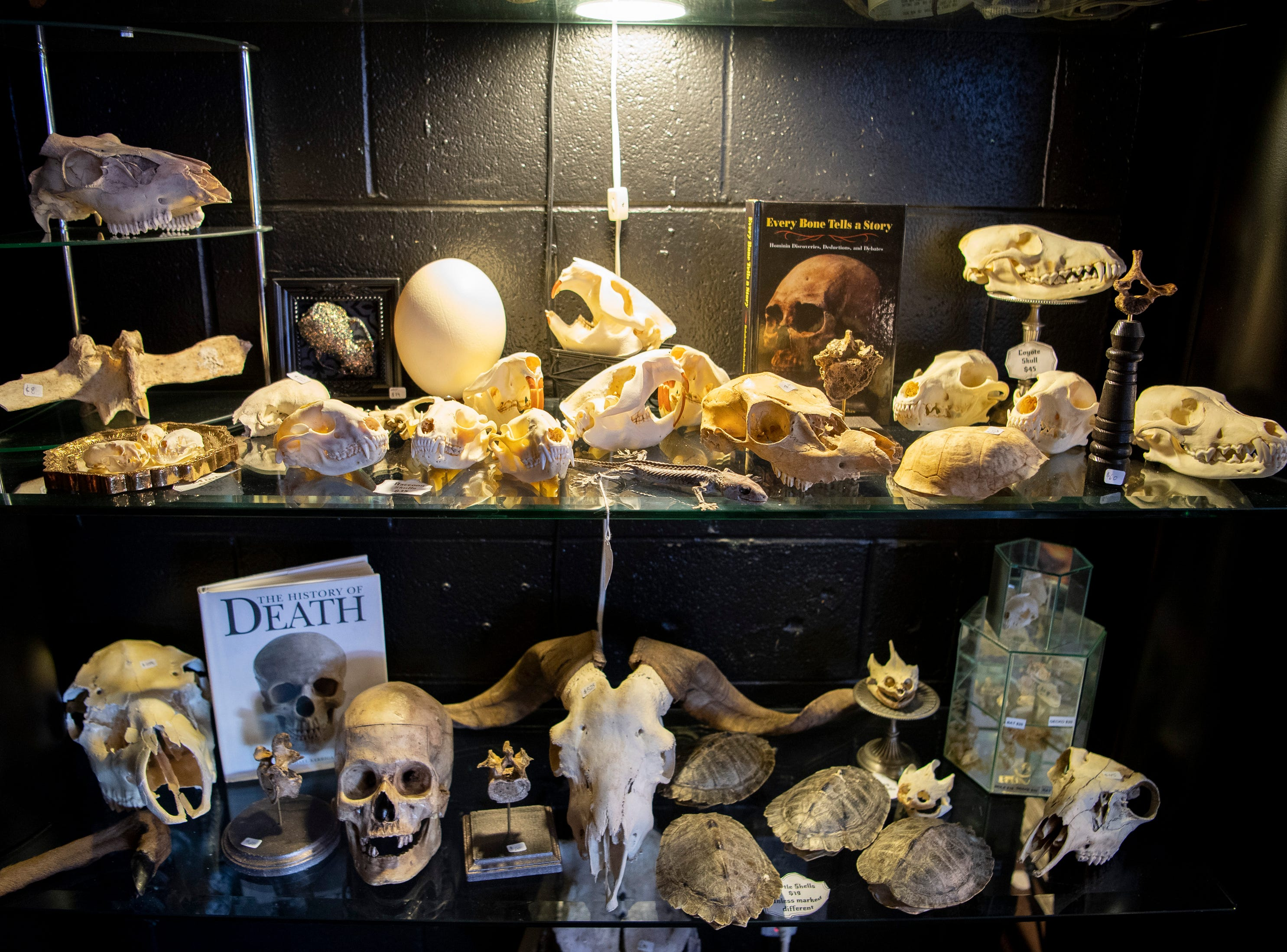 Various items for sale at Hail, Dark Aesthetics in Nashville, Tenn., Sunday, Jan. 20, 2019.