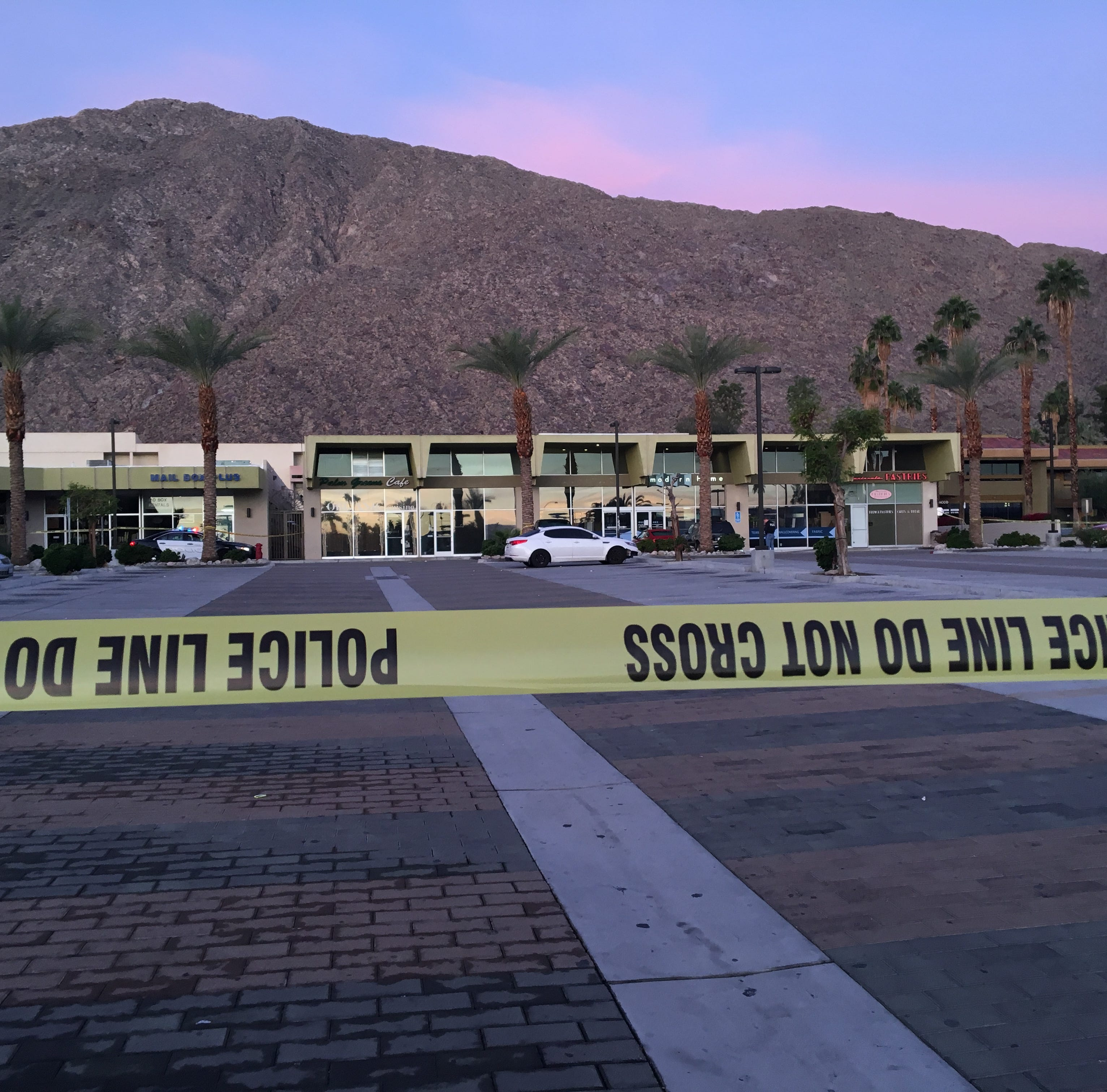 Palm Springs closes Zelda's Nightclub for at least 45 days after issues with security plan