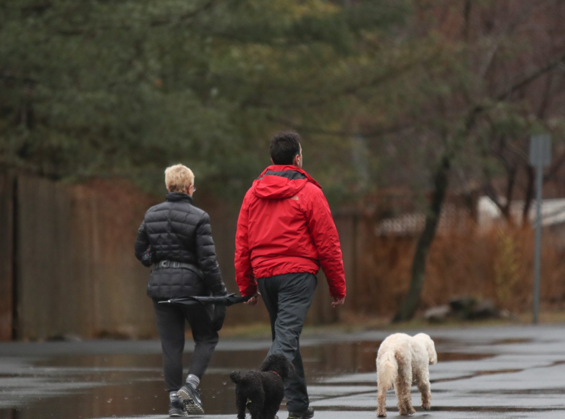 Residents are out walking their dogs in Piermont on Sunday, January 20, 2019.