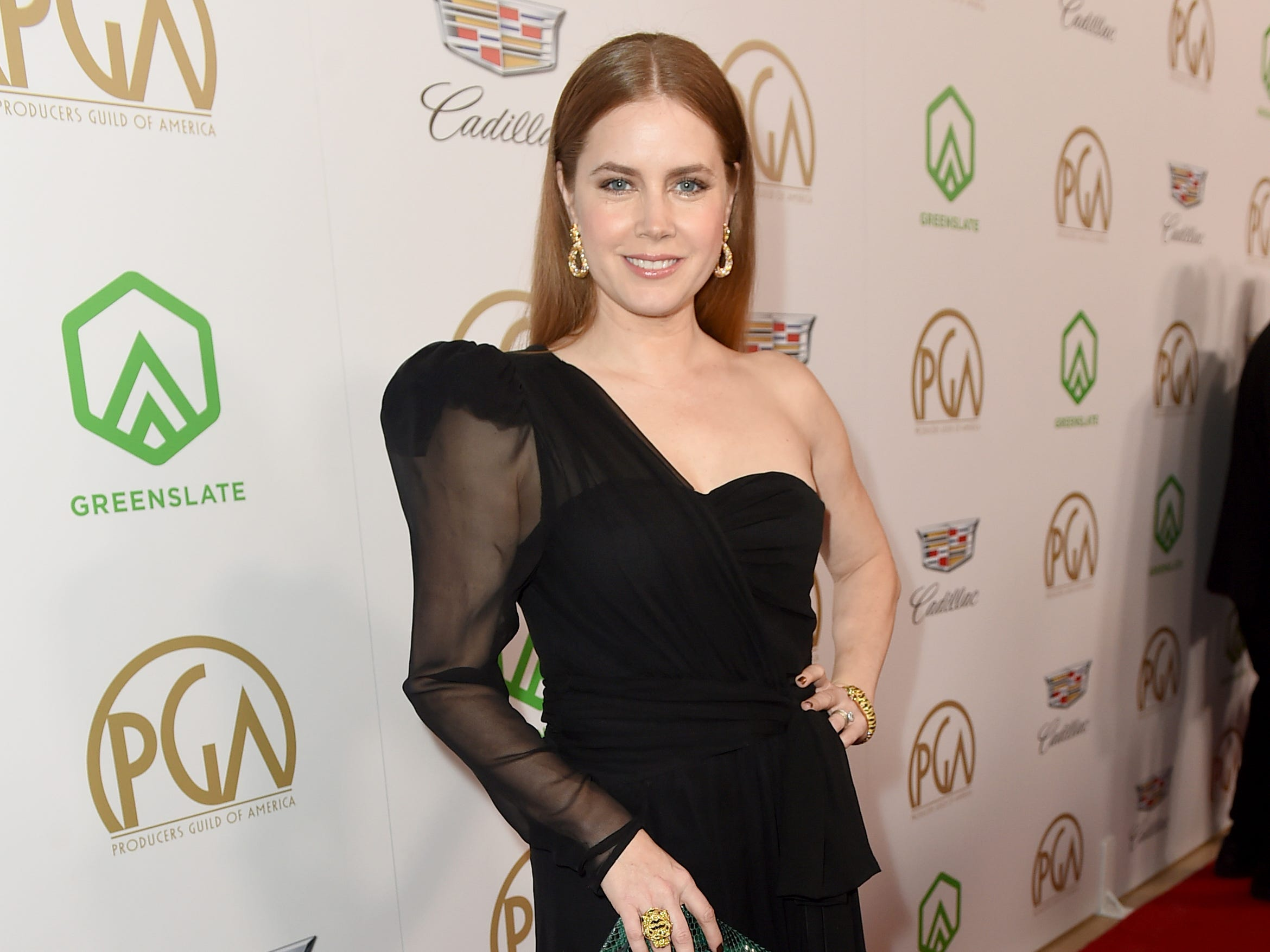 IMAGE DISTRIBUTED FOR PRODUCERS GUILD OF AMERICA - Amy Adams arrives at the 30th Producers Guild Awards presented by Cadillac at the Beverly Hilton on Saturday, Jan. 19, 2019, in Beverly Hills, Calif. (Photo by Jordan Strauss/Invision for Producers Guild of America/AP Images) ORG XMIT: CALB124