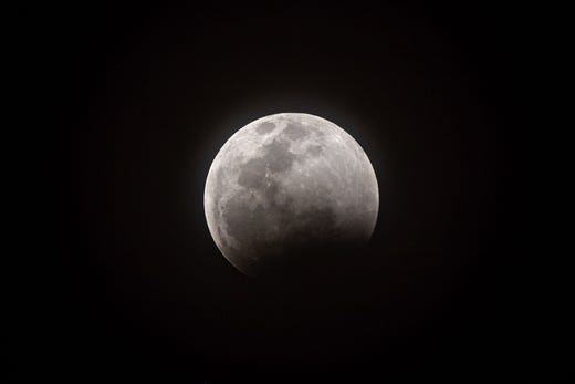 wolf blood moon january 2019 florida - photo #43