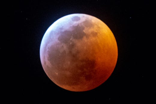 wolf blood moon january 2019 florida - photo #25